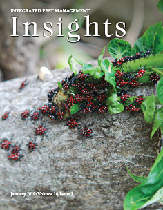 January IPM Insights cover